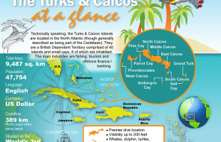 Turks and Caicos Islands Real Estate