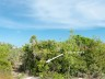 Long Bay-pristine beachfront- estate building lot - turks and caicos-for sale-view of path to beach label