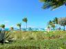 Grace Bay Beachfront Condo, Ocean Club West view 2